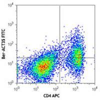 FITC anti-human CD134 (OX40)