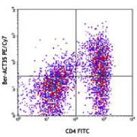 PE/Cy7 anti-human CD134 (OX40)