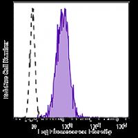 APC/Cy7 anti-human CD66b