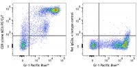 PE/Cy7 anti-mouse CD9